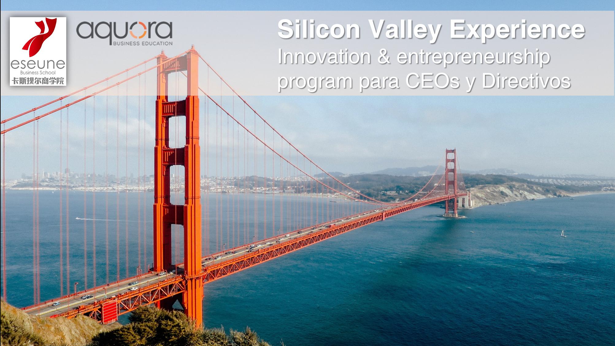 formacion Silicon Valley